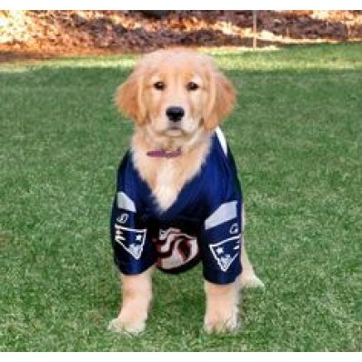 gronk jersey for dogs
