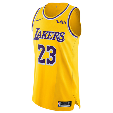 jersey of lebron james